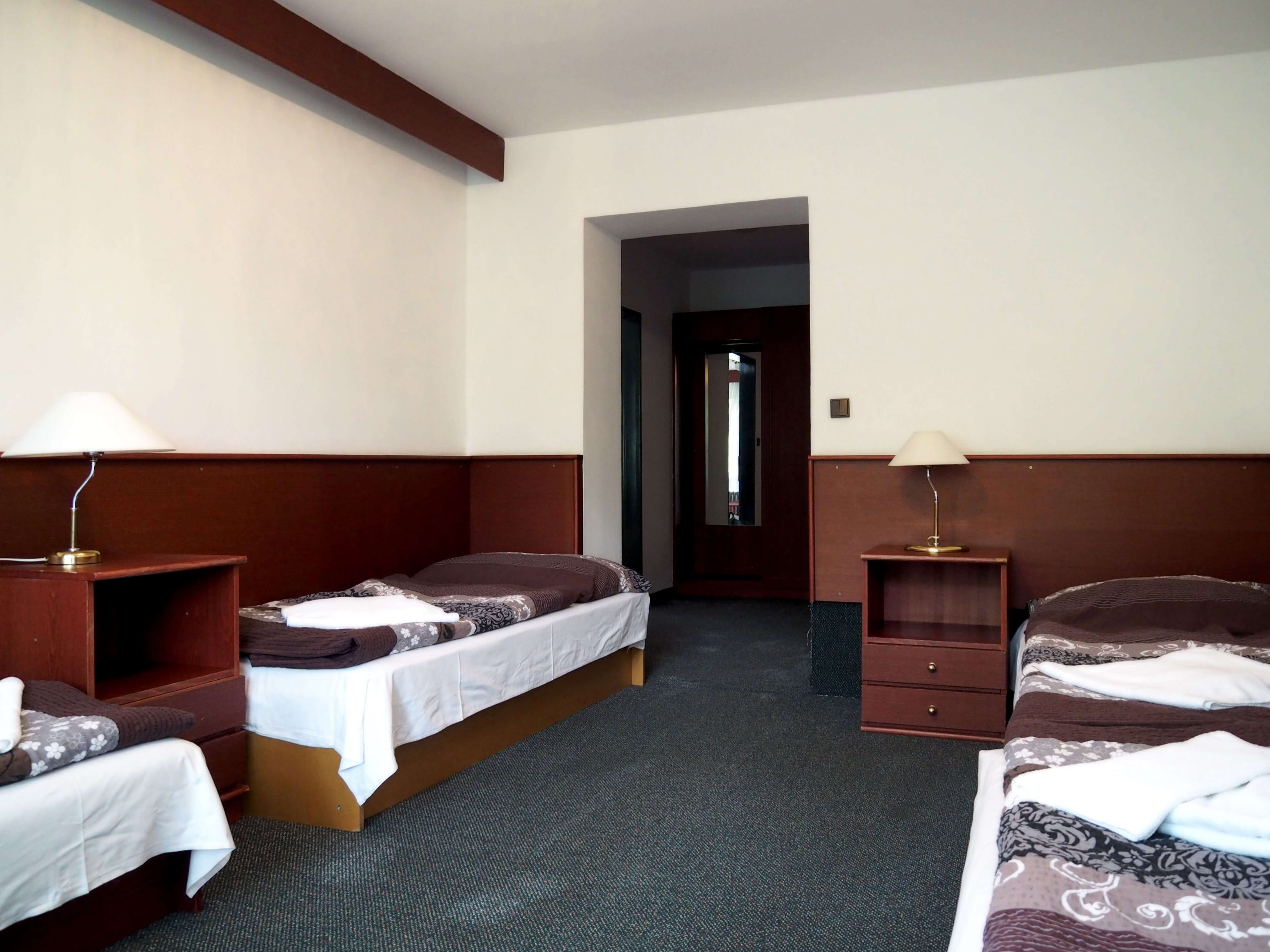 Hotel Astra Srby u města Kladno pokoj 101B (6)
